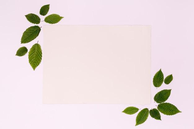 Cartão de moldura mock-up com folhas