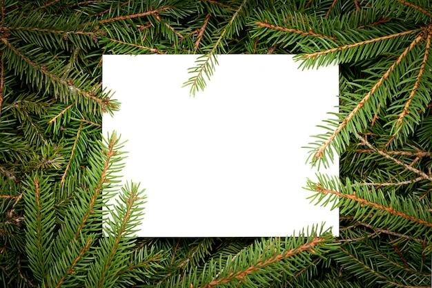 Cartão de natal com galhos de árvores de natal