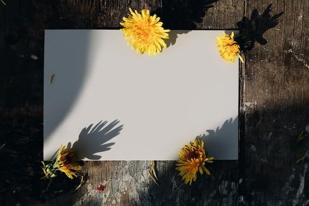 Cartão de papel em branco em fundo natural