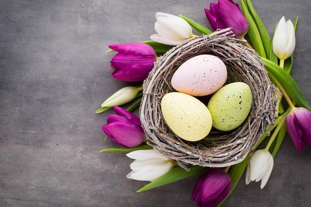 Cartão de primavera. ovos de páscoa no ninho e tulipa. plano de fundo cinza.