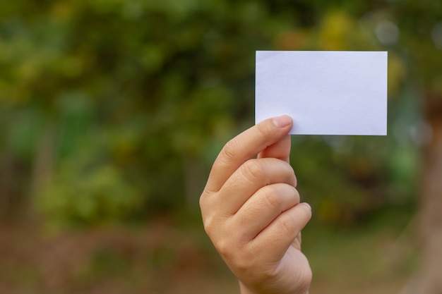 Cartão de visita em branco à disposicão em um fundo da natureza. brincar