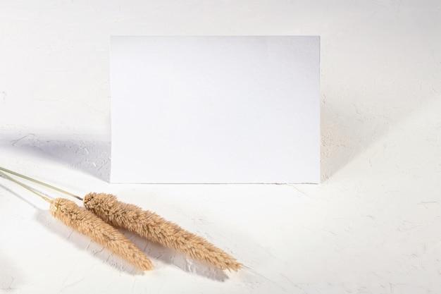 Cartão em branco ou nota com flor de plantas secas