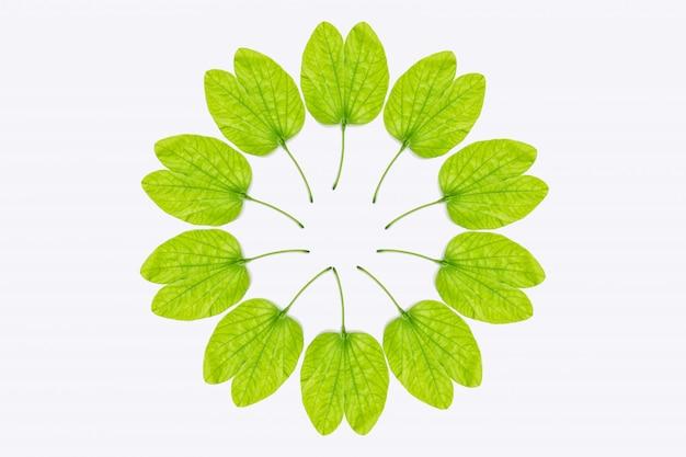 Cartão feliz dussehra, folha verde
