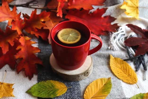 Cartão postal de outono. uma xícara de chá de ervas com limão, um cobertor quente e brilhantes folhas de outono.