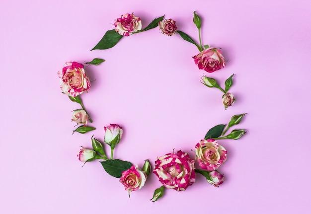 Cartão postal. quadro redondo de pequenas rosas e folhas. fundo rosa. vista de cima