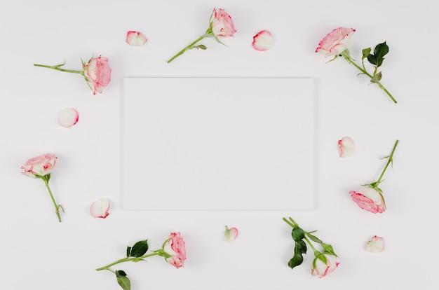 Cartão vazio, rodeado por rosas delicadas