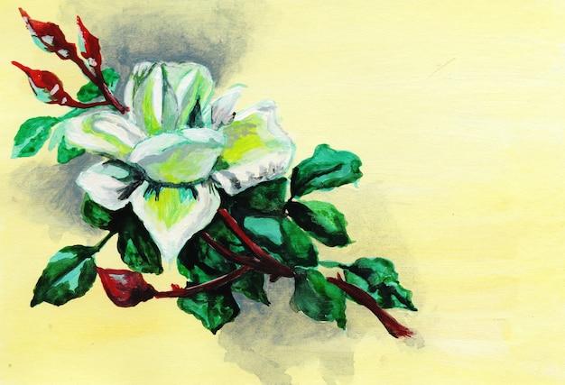 Cartão vintage com uma rosa branca em um fundo creme rosa desenhada à mão no papel lugar