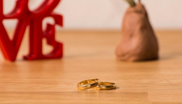 Cartas de amor vermelhas sobre fundo branco, à esquerda, com dois anéis e planta