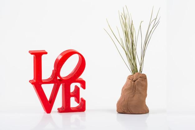 Cartas de amor vermelhas sobre fundo branco à esquerda com planta
