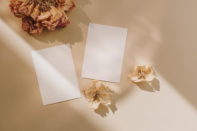 Cartões de folha de papel em branco com espaço de cópia e botões de flores secos com sombra de luz solar em bege