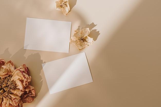 Cartões de folha de papel em branco com espaço de cópia vazio e botões de flores com sombras de luz do sol em bege