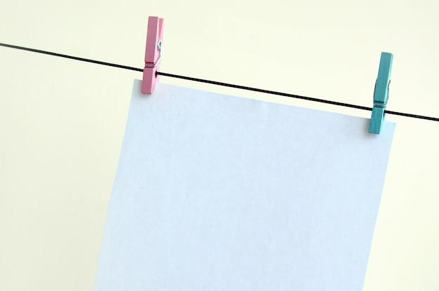 Cartões vazios brancos na corda, fundo claro da parede.