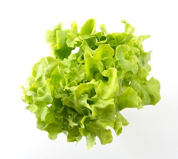 Carvalho verde
