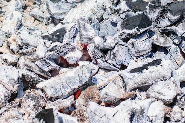 Carvão vegetal a lenha