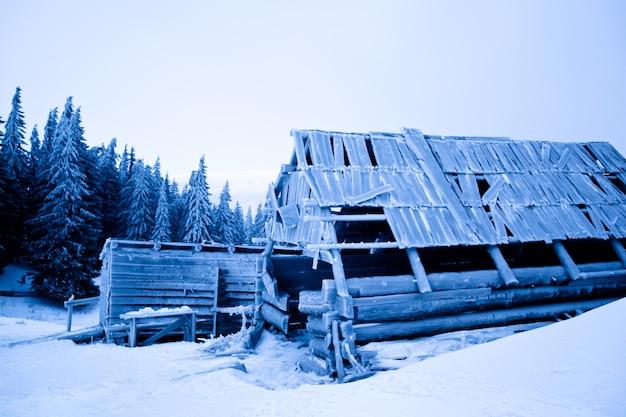 Casa abandonada coberta de geada sobre neve e floresta de inverno