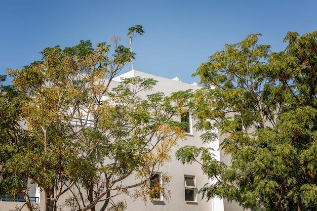 Casa branca bonita em árvores verdes em uma cidade do sul contra um céu azul.