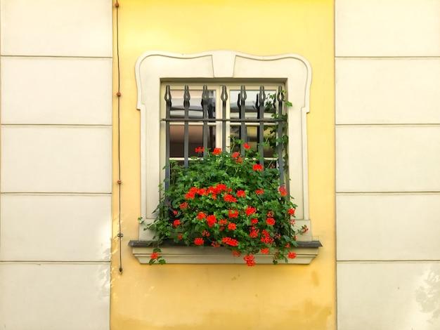 Casa colorida com vasos de flores na janela do prédio em um dia ensolarado com bicicletas próximas