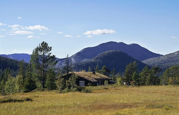 Casa de campo rural norueguesa típica com paisagem deslumbrante e bela vegetação na noruega