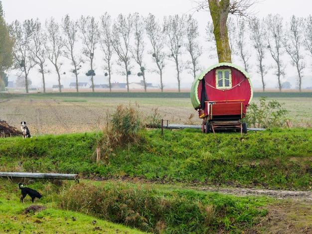 Casa de diversões em carruagem puxada por cavalos no campo com cores vivas