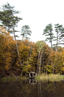 Casa de forester na floresta no monte ai-petri, na crimeia. local de descanso para turistas.