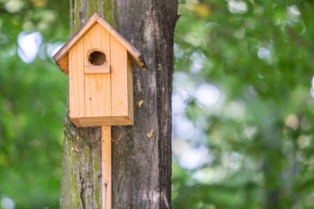 Casa de madeira amarela do pássaro em um tronco de árvore no parque verde ao ar livre.