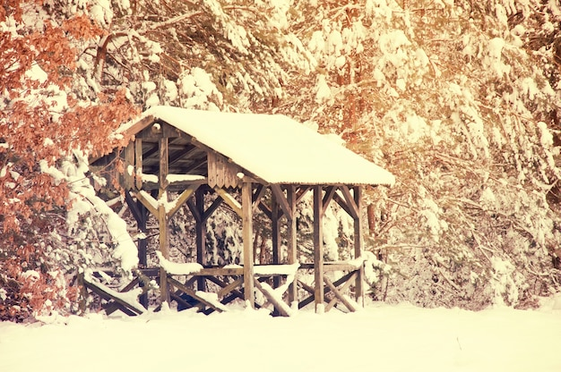 Casa de madeira coberta de neve