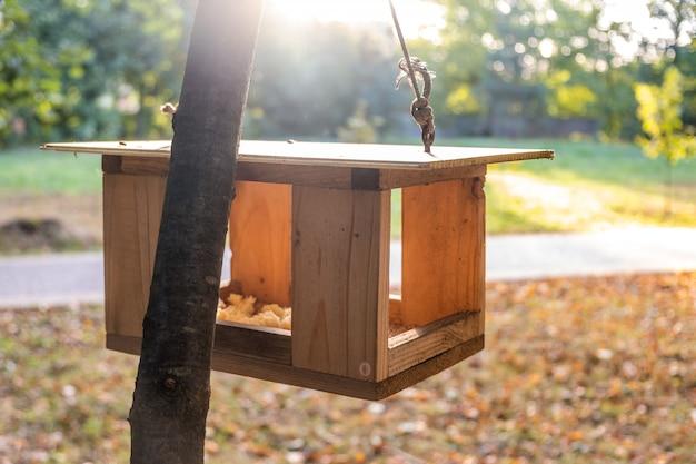 Casa de madeira do alimentador do pássaro em uma árvore no parque do outono. conceito de cuidados de animais selvagens.