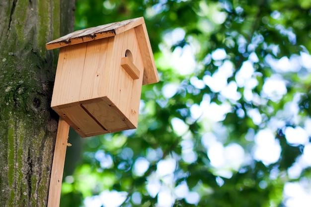 Casa de madeira do pássaro ou caixa de assentamento amarela em uma árvore no parque ou na floresta do verão.