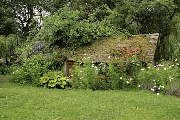 Casa de madeira em um campo gramado cercado por plantas e flores