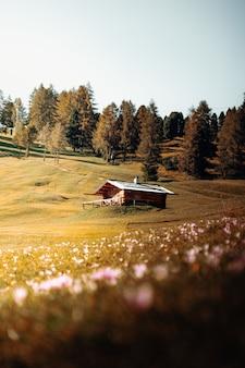 Casa de madeira marrom em campo de grama verde perto de árvores verdes durante o dia