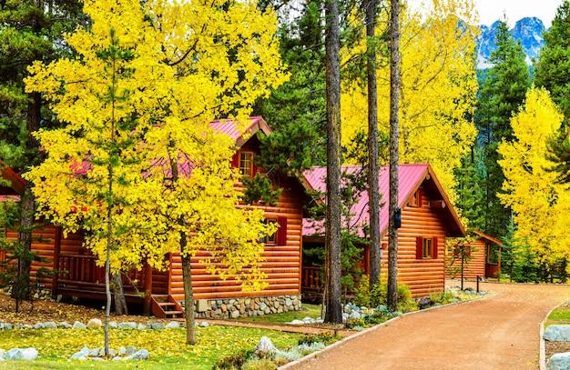 Casa de madeira na floresta de outono multicolorida no outono, parque nacional de banff
