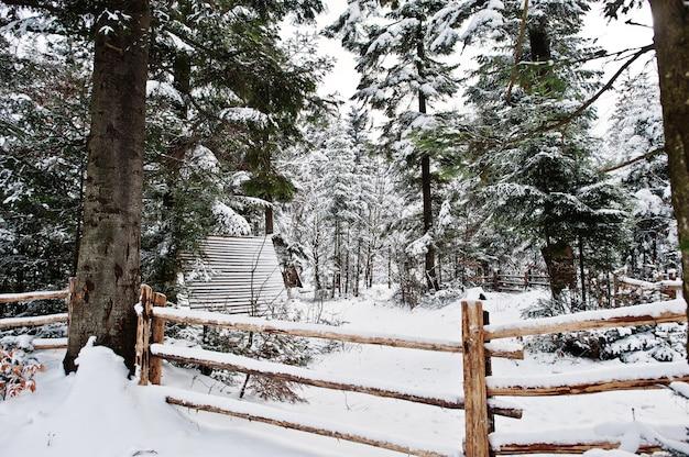 Casa de madeira na floresta de pinheiros coberta pela neve