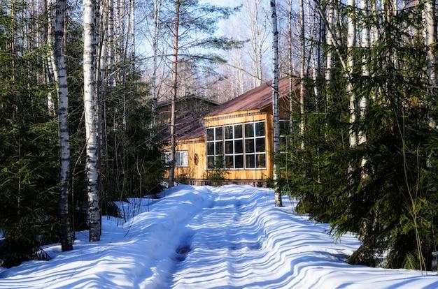 Casa de madeira na floresta russa