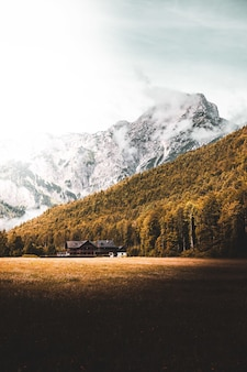 Casa de madeira preta ao lado de árvores