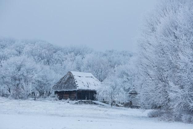 Casa de madeira velha no meio da floresta no inverno