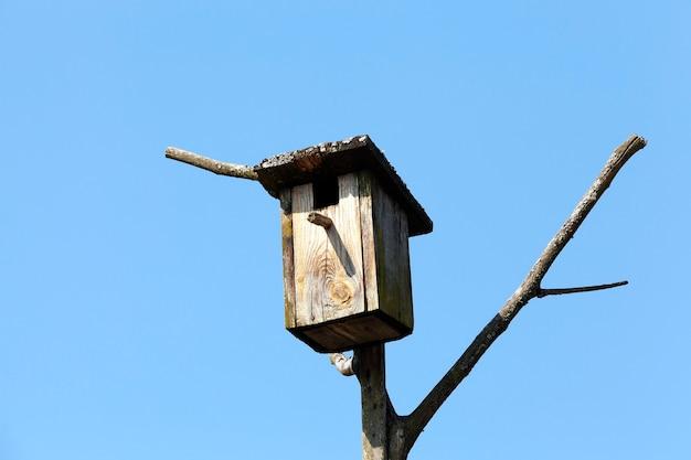 Casa de passarinho de madeira feita de pranchas de madeira, fixada em galhos de árvores contra o céu azul, close-up