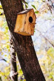 Casa de passarinho de madeira presa a um tronco de árvore em um parque da cidade