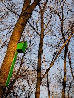 Casa de passarinho de madeira verde em uma árvore
