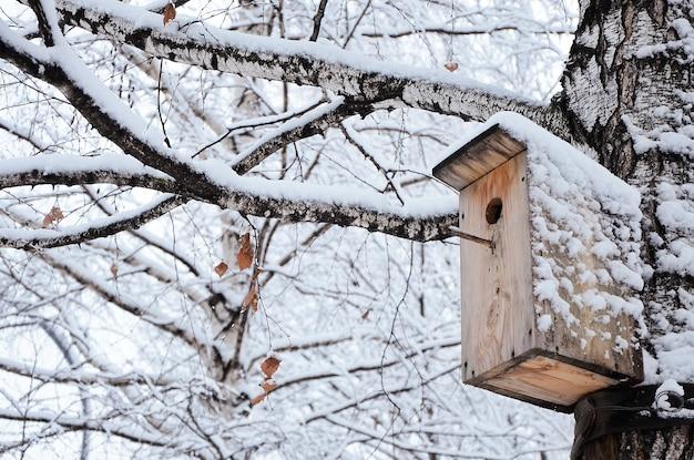 Casa de passarinho em uma árvore de neve