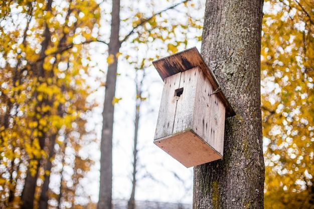 Casa de passarinho na árvore. abrigo para pássaros.