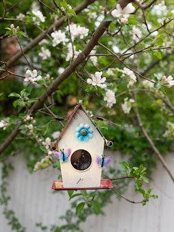 Casa de passarinho pendurada em um galho de uma árvore de florescência. cuidados com pássaros.