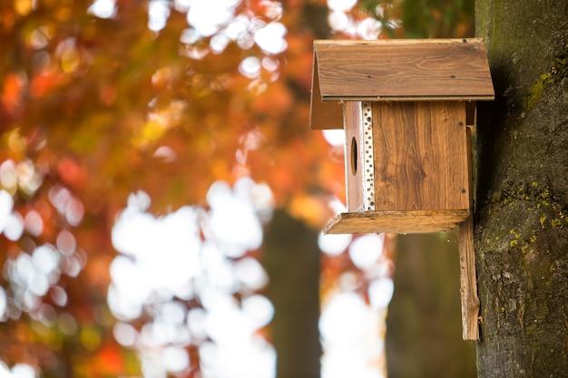 Casa de pássaro marrom de madeira ou caixa de ninho anexada ao tronco de árvore no parque outono