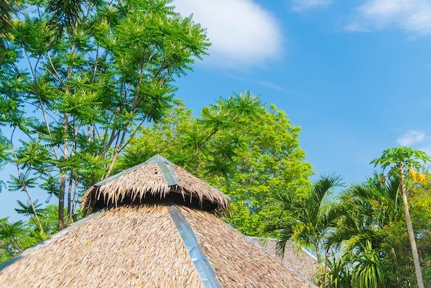 Casa de telhado de colmo e um jardim verde
