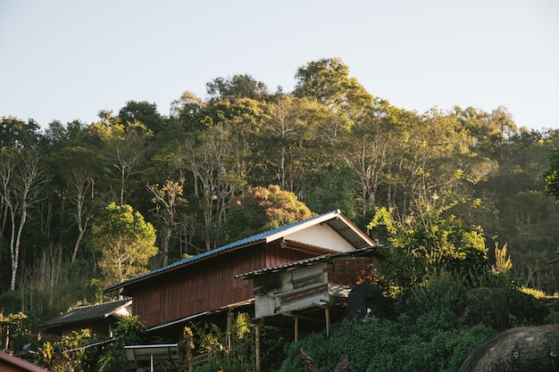 Casa do aldeão com árvores e montanha no fundo.