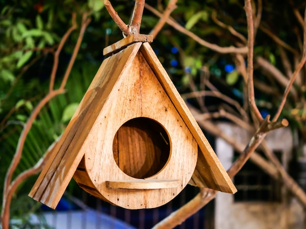 Casa do pássaro de madeira Foto Premium
