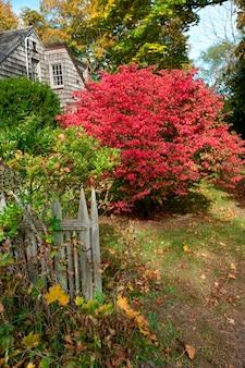 Casa e folhas de outono nos hamptons
