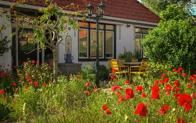 Casa holandesa colorida em um dia claro e brilhante