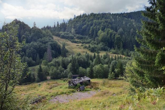 Casa isolada abandonada nas montanhas no verão em um fundo de árvores verdes e grama