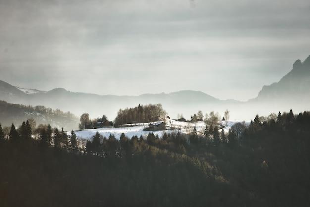 Casa isolada em um prado cercado pela floresta