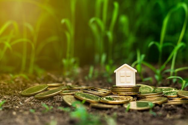 Casa pequena na pilha de moedas de ouro no jardim